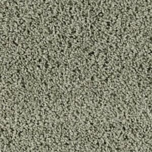 <center>Textured Carpet</center>