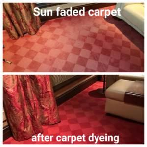 carpet dyeing companies near me