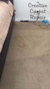 800 656 9862 Expert Carpet Dyeing Bleach Spot Repair